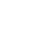 Logo The Insight Group